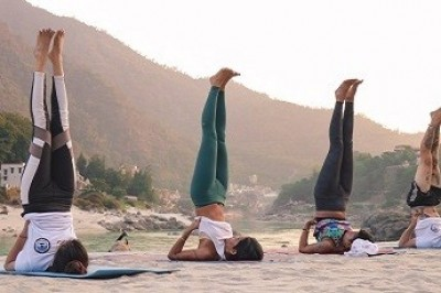 yoga teacher training in India | yoga teacher training in Rishikesh  | 200-hour yoga teacher training in India