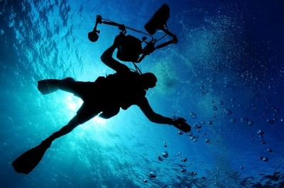 Find The Best Course For Scuba Diving Certification