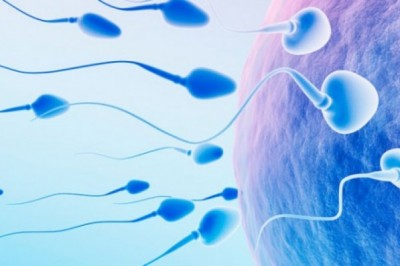 Solve the Problem of Male Infertility